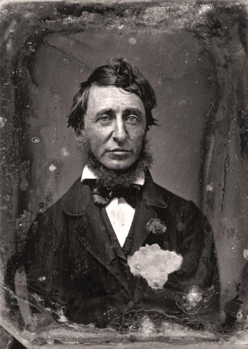 Portrait de l'écrivain Henry David Thoreau