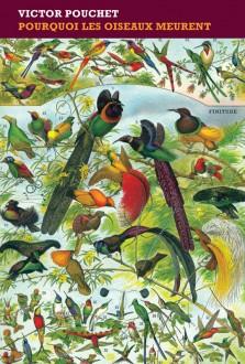 Pourquoi les oiseaux meurent, de Victor Pouchet